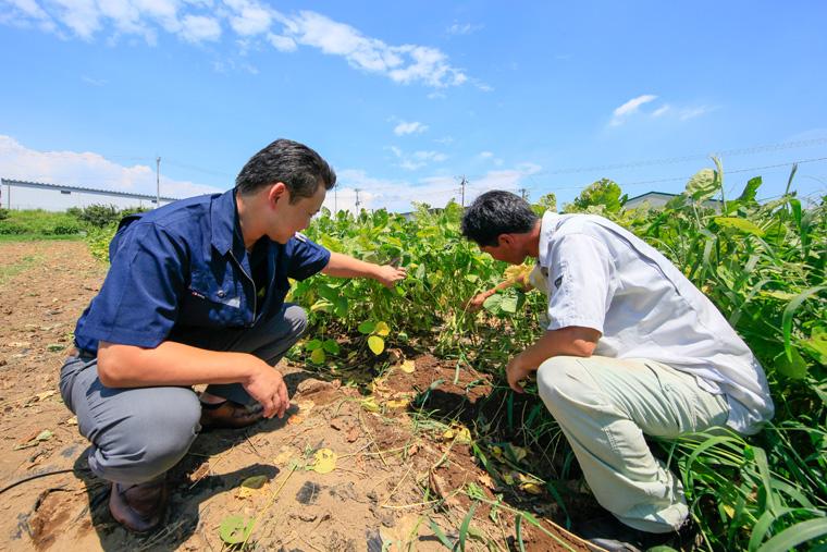 頻繁に産地に行き、農作物の生育状況など常に情報収集し、生産者の方にも消費者の声を届けることによって情報共有しています